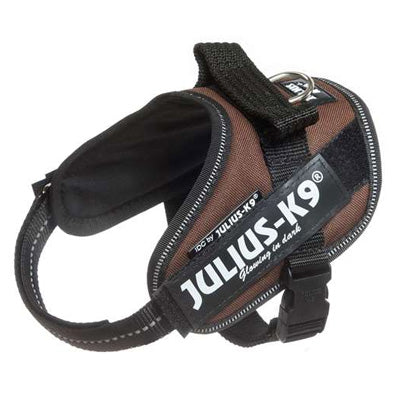 Julius K9 IDC Powerharness for Puppies and Chihuahuas Chocolate Brown