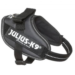 Julius K9 IDC Powerharness for Puppies and Chihuahuas Grey