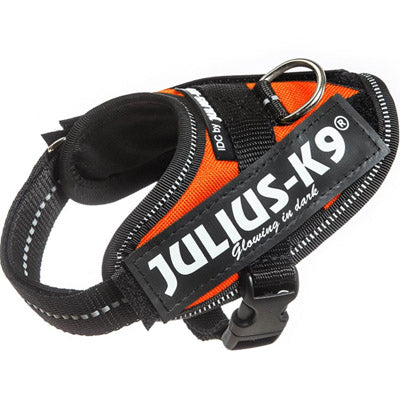 Julius K9 IDC Powerharness for Puppies and Chihuahuas UV Orange