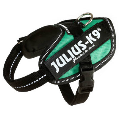Julius K9 IDC Powerharness for Puppies and Chihuahuas Grass Green Chihuahua Clothes and Accessories at My Chi and Me