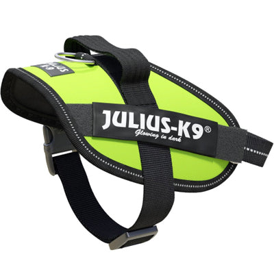Julius K9 IDC Powerharness for Puppies and Chihuahuas Neon Green Chihuahua Clothes and Accessories at My Chi and Me