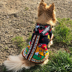Size 6 Hand Embroidered Peruvian Dog Jumper Midnight Blue Red Yellow and Green 32cm