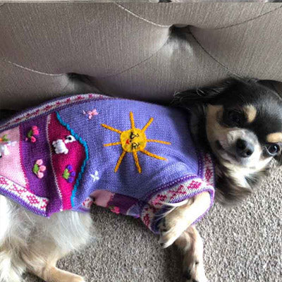 Size 1 Hand Embroidered Peruvian Dog Jumper Lilac & Pink 23cm Chihuahua Clothes and Accessories at My Chi and Me