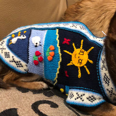 Size 5 Hand Embroidered Peruvian Dog Jumper Navy and Turquoise 30cm Chihuahua Clothes and Accessories at My Chi and Me