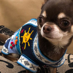 NEW Size 6 Hand Embroidered Peruvian Dog Jumper Navy and Turquoise 30cm Chihuahua Clothes and Accessories at My Chi and Me