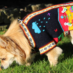 Size 4 Hand Embroidered Peruvian Dog Jumper Midnight Blue Red Yellow and Green 27cm