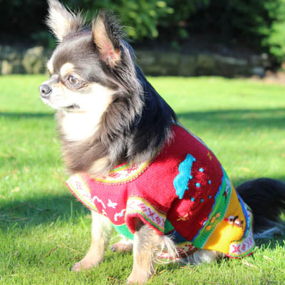 Size 2 Hand Embroidered Peruvian Dog Jumper Red Yellow Blue and Green 24cm - My Chi and Me