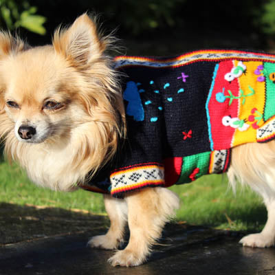 Size 4 Hand Embroidered Peruvian Dog Jumper Midnight Blue Red Yellow and Green 27cm Chihuahua Clothes and Accessories at My Chi and Me