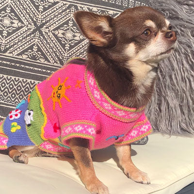 Size 6 Hand Embroidered Peruvian Dog Jumper Bubblegum Pink 33cm