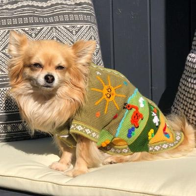 Size 5 Hand Embroidered Peruvian Dog Jumper Olive Green & Ochre 29cm