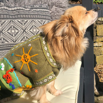 Size 3 Hand Embroidered Peruvian Dog Jumper Olive Green & Ochre 26cm
