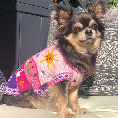 Size 5 Hand Embroidered Peruvian Dog Jumper Baby Pink and Purple 29cm