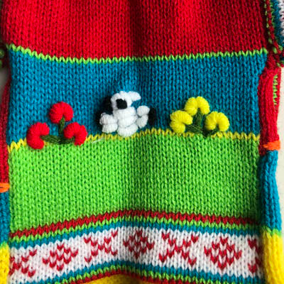 Size 5 Hand Embroidered Peruvian Dog Jumper Tarma Days Red Yellow Turquoise and Green 30cm