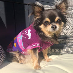 Size 2 Hand Embroidered Peruvian Dog Jumper Warm Purple and Lilac 22cm