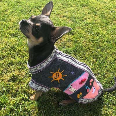 Size 3 Hand Embroidered Peruvian Dog Jumper Grey and Pink 25cm