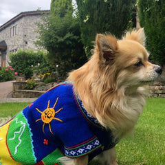 Size 8 Hand Embroidered Peruvian Dog Jumper Royal Blue 36cm