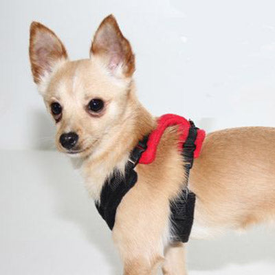 Tiny PerfectFit Harness Chihuahua Puppies 28-36cm Chest