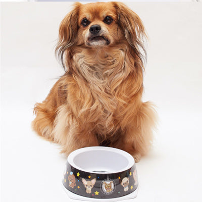 Star Character Feeding Bowl with Small Dogs in Safe Food Grade Plastic