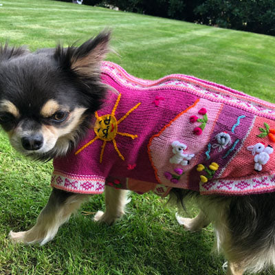 Size 5 Hand Embroidered Peruvian Dog Jumper Cerise Pink 30cm Chihuahua Clothes and Accessories at My Chi and Me