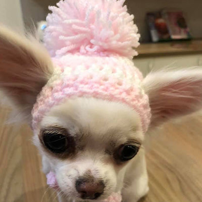Small Dog Hand Knitted Chihuahua Hat with Pom Pom Girls 25 COLOURS Chihuahua Clothes and Accessories at My Chi and Me