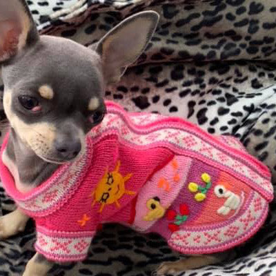 Size 2 Hand Embroidered Peruvian Dog Jumper Rhubarb Pink 22cm Chihuahua Clothes and Accessories at My Chi and Me