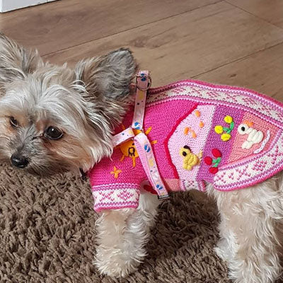 Size 1 Hand Embroidered Peruvian Dog Jumper Rhubarb Pink 21cm - My Chi and Me