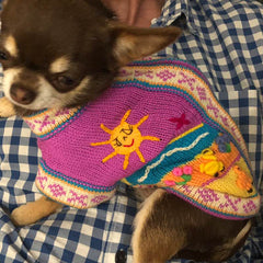 Size 2 Hand Embroidered Peruvian Dog Jumper Violet 26cm