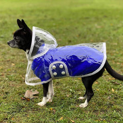 White Waterproof Raincoat for Chihuahuas and Small Dogs - 4 SIZES