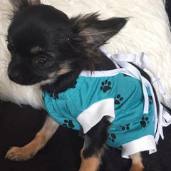 Surgery Suits for Small Dogs Post Surgery Wound Protection Turquoise Paw Print Chihuahua Clothes and Accessories at My Chi and Me