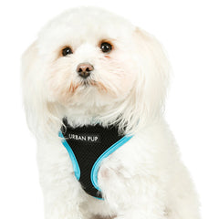 Active Mesh Black and Blue Harness by Urban Pup