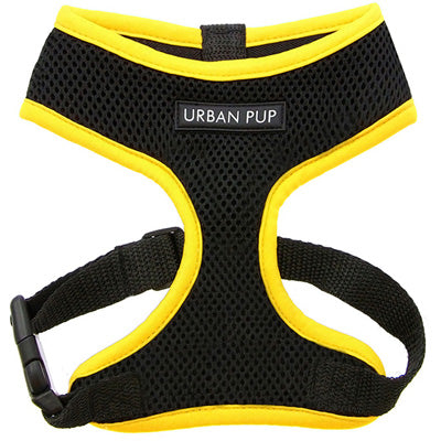 Active Mesh Black and Yellow Harness by Urban Pup Chihuahua Clothes and Accessories at My Chi and Me