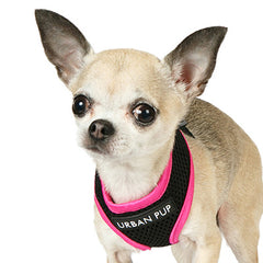 Active Mesh Black and Pink Harness by Urban Pup Chihuahua Clothes and Accessories at My Chi and Me