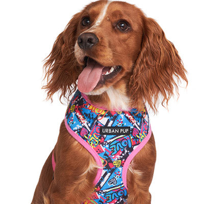 Pink and Blue Graffiti Harness by Urban Pup