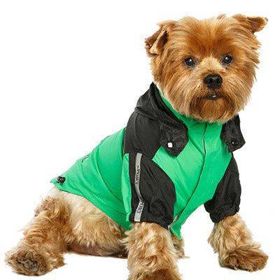 Urban Pup Chihuahua Puppy Chihuahua or Small Dog Black & Green Trailfinder Windbreaker Jacket Chihuahua Clothes and Accessories at My Chi and Me