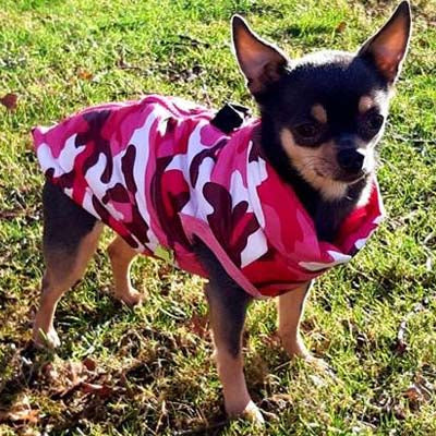Premium Pink Camouflage Water Resistant Padded Gilet Style Dog Coat Chihuahua Clothes and Accessories at My Chi and Me