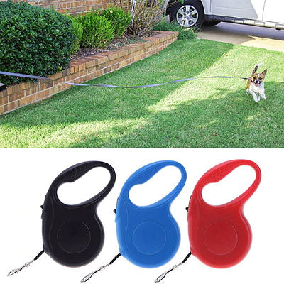 Value Retractable Extending Chihuahua or Small Dog Lead - 3 COLOURS