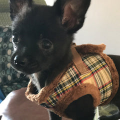 Urban Pup Faux Fur Lined Tartan Chihuahua or Chihuahua Puppy Vest Harness Brown