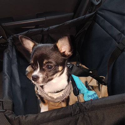 Premium Portable Folding Travel Car Seat Strong Black Nylon PVC Coated Cloth Chihuahua Clothes and Accessories at My Chi and Me