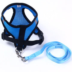 Breathable Mesh Chihuahua or Small Dog Harness and Lead Set Blue - 2 SIZES Chihuahua Clothes and Accessories at My Chi and Me