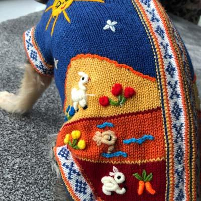 Size 3 Hand Embroidered Peruvian Dog Jumper Blue with Sunset Orange 23cm Chihuahua Clothes and Accessories at My Chi and Me
