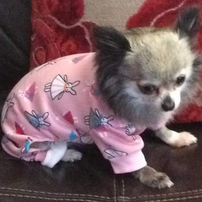 Chihuahua Puppies and Small Chihuahua Pyjamas Onesie Style Bunny Print Cotton Pink Premium Quality Chihuahua Clothes and Accessories at My Chi and Me