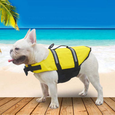 Pet Life Jacket Buoyancy Aid for Chihuahuas or Small Dogs Orange Chihuahua Clothes and Accessories at My Chi and Me