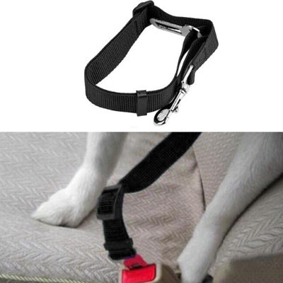 Premium Dog Seat Belt With Clip Black - My Chi and Me