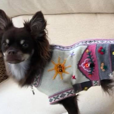 Size 5 Hand Embroidered Peruvian Dog Jumper Cream Pink and Grey 32cm Chihuahua Clothes and Accessories at My Chi and Me