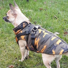 Trekker Water Resistant Padded Chihuahua Dog Coat with Inbuilt Harness Desert Camouflage Chihuahua Clothes and Accessories at My Chi and Me