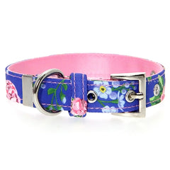Pink and Blue Floral Burst Collar by Urban Pup Chihuahua Clothes and Accessories at My Chi and Me