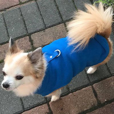 Chihuahua or Small Dog Fleece Jumper with D Rings For Leash Blue