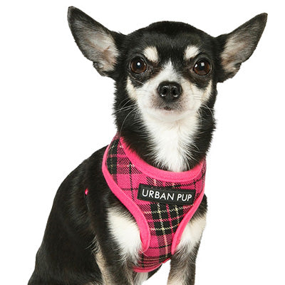 Fuchsia Pink Tartan Harness by Urban Pup Chihuahua Clothes and Accessories at My Chi and Me