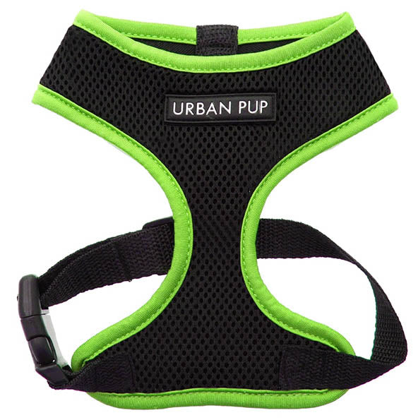 Active Mesh Black and Green Harness by Urban Pup Chihuahua Clothes and Accessories at My Chi and Me