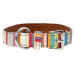 Henley Striped Collar by Urban Pup Chihuahua Clothes and Accessories at My Chi and Me